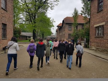 Wycieczka do Auschwitz Birkenau