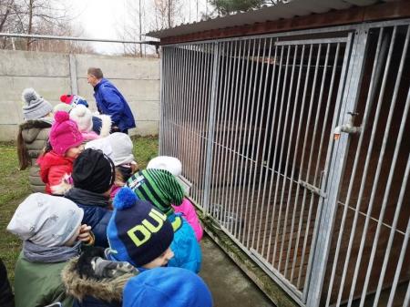 Wizyta w schronisku dla zwierząt