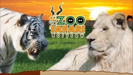 Wycieczka do ZOO Safari Borysew